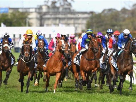 The Caulfield Cup - Panduan taruhan pacuan kuda online